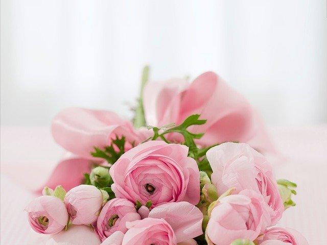 Pourquoi devriez-vous choisir des roses?